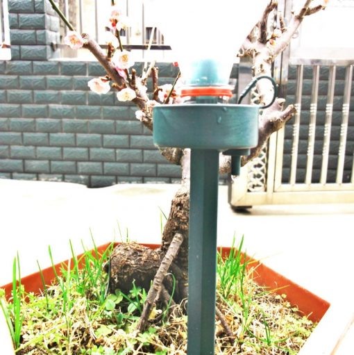Automatic Drip Self Plant Watering Device
